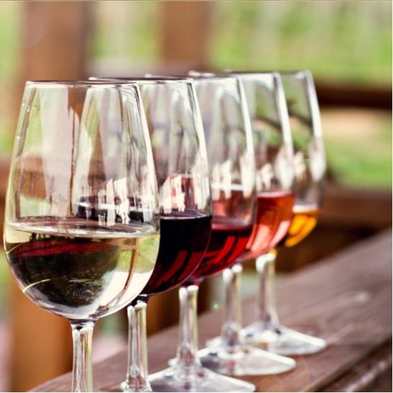 Selectionner les meilleurs vins suisse au Village du Vin a Ecole Hoteliere Geneve 565